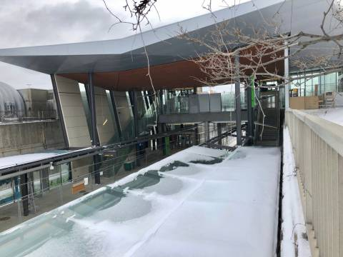 Snapshot of Lees Station - January 10, 2019